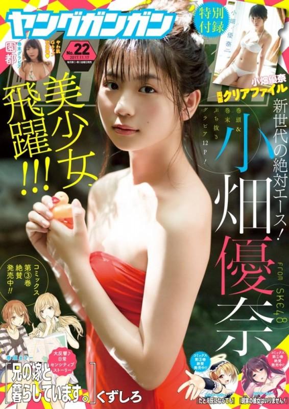 デジタル版ヤングガンガン 2017 No.22