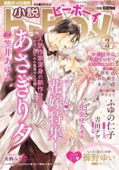 小説b-Boy 春の発情エロス 甘くとろける花嫁特集(2015年3月号)