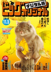 ビッグコミックオリジナル 2016年21号(2016年10月20日発売)