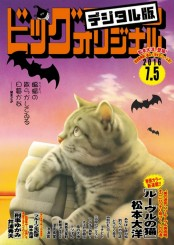 ビッグコミックオリジナル 2016年13号