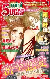 miniSUGAR Vol.30(2014年1月号)