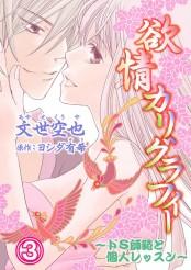 欲情カリグラフィー〜ドS師範と個人レッスン〜 3巻