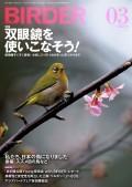 BIRDER 2013年 3月号