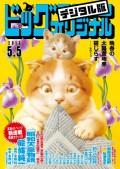 ビッグコミックオリジナル 2017年9号(2017年4月20日発売)