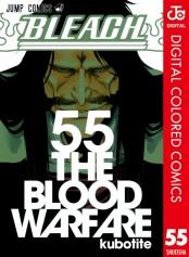 BLEACH カラー版 55