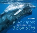 まいごになった子どものクジラ 〜南太平洋トンガ王国のザトウクジラ〜(小学館の図鑑NEOの科学絵本)