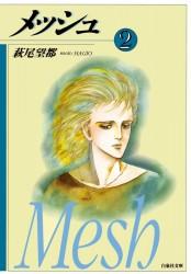 メッシュ(2)