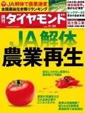 週刊ダイヤモンド 14年11月29日号