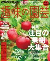 NHK 趣味の園芸 2018年11月号