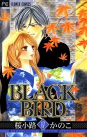 BLACK BIRD 17