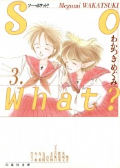 So What?(3)