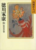 徳川家康(9) 碧雲の巻