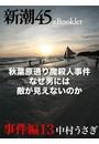 秋葉原通り魔殺人事件 なぜ男には敵が見えないのか―新潮45eBooklet 事件編13