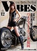 VIBES【バイブズ】2015年12月号
