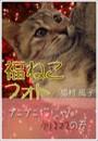 福ねこフォト〜プニプニ猫にゃんクリスマスの巻
