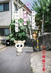 メチャイロちいき猫やってます!【分冊版】3