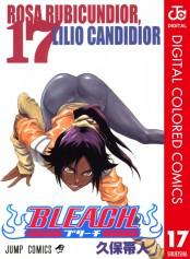 BLEACH カラー版 17