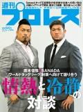 週刊プロレス 2020年 12/16号 No.2096