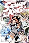 SHAMAN KING 〜シャーマンキング〜 KC完結版(24)
