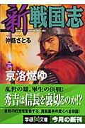 新戦国志 3の本