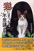猫にまつわる不思議な話の本