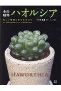 多肉植物ハオルシア
