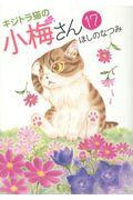 キジトラ猫の小梅さん 17