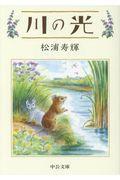 川の光の本