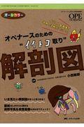 """オペナースのための""""イイトコ取り""""解剖図の本"""