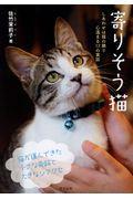 寄りそう猫の本