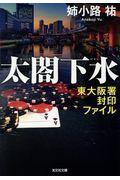 太閤下水の本