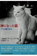 神になった猫の本