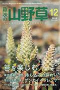 趣味の山野草 2019年 12月号の本